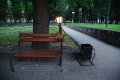Smolensk, Lopatinsky park