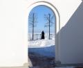 Peterhof. Spring