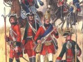 Томский мушкетерский полк
