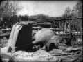 Блокадный слон Бэтти, сентябрь 1941 года