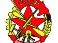 Эмблема ОСОАВИАХИМа — Общества содействия обороне, авиационному и химическому строительству (с 23 января 1927 года по 20 августа 1951 года)