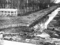 Большой каскад фонтанов, фото ЧГК, осматривавшей Петергоф в 1944 году