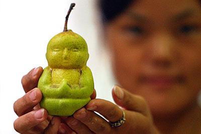 груша в виде Будды