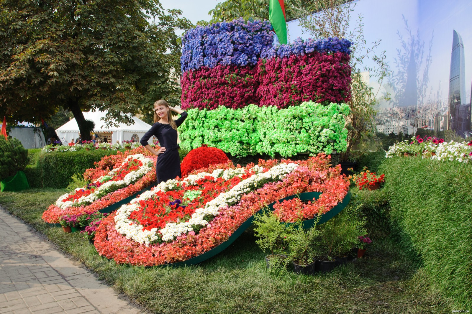 Цветы в азербайджане фото